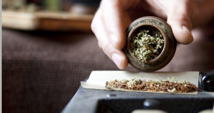 Thuisteelt cannabis